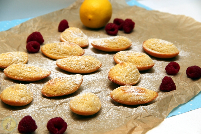 Lemon & Raspberry Madeleines 01