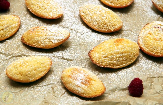 Lemon & Raspberry Madeleines 02