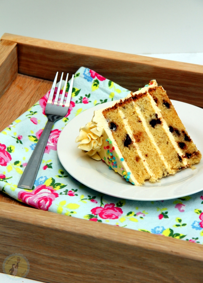 Vanilla Sprinkle Birthday Cake 04